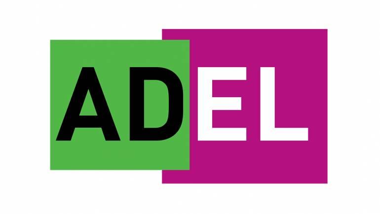 EVOLUCIÓN DEL ADEL